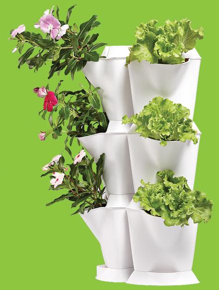 Minigarden Jardins Verticais E Sistemas De Cultivo