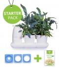 Starter Pack Minigarden Saladas e Aromáticas