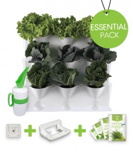 Essential Pack Minigarden Horta Vertical