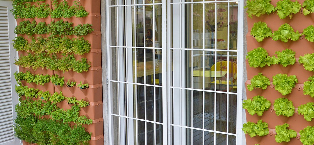 Horta vertical Minigarden na Academia dos Sabores Vaqueiro