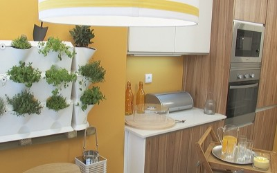 Querido, mudei a casa recomenda uma horta vertical na cozinha