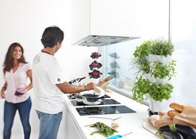 Minigarden Corner na cozinha