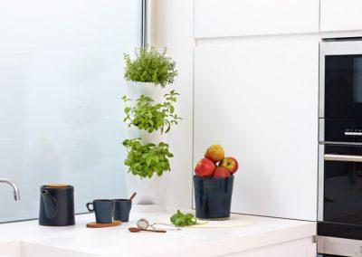 Minigarden Corner com aromáticas