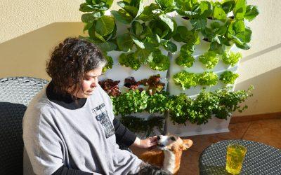 Na horta com… Joana Lobato