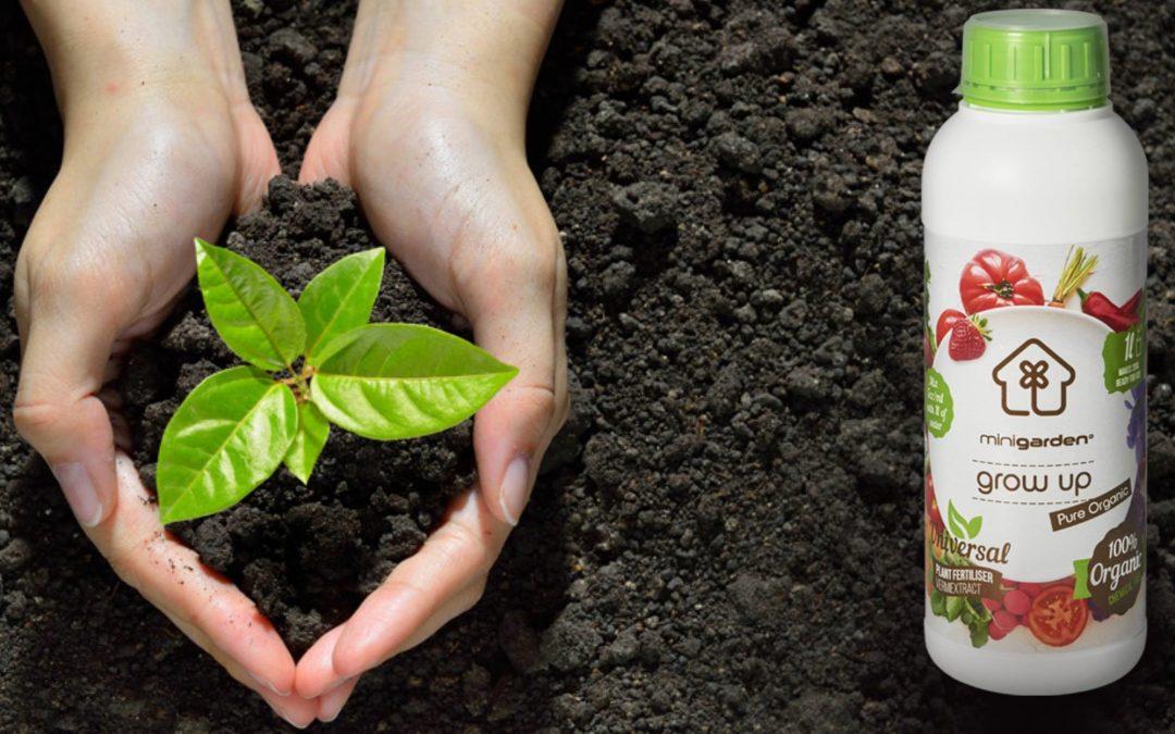 A importância da utilização de adubos biológicos para a fertilização de plantas na agricultura e jardinagem contemporânea